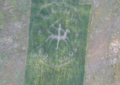 kukuruzu-labirintas-2009-03