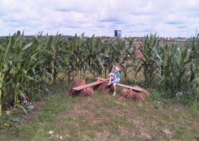 kukuruzu-labirintas-2009-07