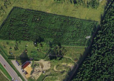 lkukuruzu-labirintas-2013-2x-1024x679